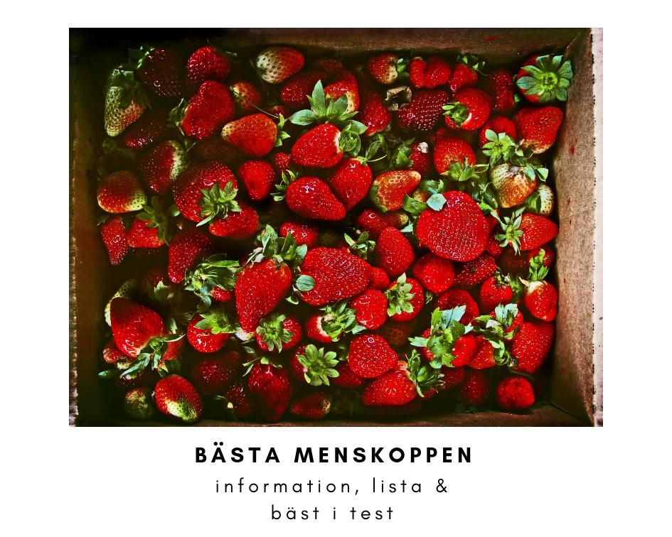 jordgubbar, basta menskoppen
